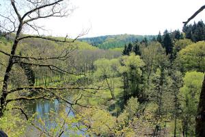 Das Tal der Zwickauer Mulde bei Berthelsdorf