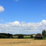 Im Kohrener Land bei Ebersbach