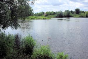 Mündung der Weißen Elster in die Saale