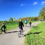Radfahrer auf dem Elsterradweg am Cospudener See