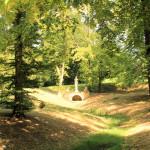 Im Park Luisium