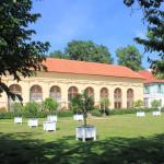 Orangerie im Schlosspark Luisium