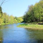 Die Zwickauer Mulde bei Rochsburg