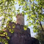 Burg Gnandstein, Schildmauer