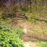 Wallburg Dewitz, Blick vom Wall zum Burghügel