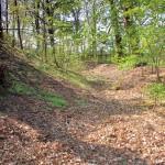Wallburg Dewitz, westlicher Wall und Graben
