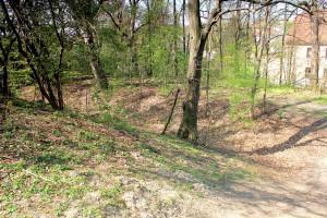 Wallburg Dewitz, nördlicher Wall und Graben