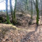 Döben, Zettenwall, nördöstlicher Wallabschnitt mit auslaufendem Graben