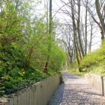 Eilenburg, Burgward