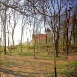 Gostemitz, Wallburg