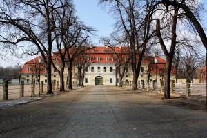 Graditz bei Torgau, Kurfürstliches Gestüt