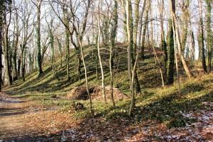Hohenmölsen, Burg Melsine