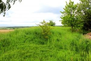 Kuhberg bei Luppa, mögliche Wallstrukturen