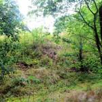 Der Malberg bei Pötzschau, Blick vom Wall über den Graben