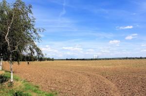 """Als """"Burgberg"""" benannter Bereich bei Nöthnitz"""
