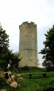 Saaleck, Burg Saaleck,