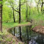 Wasserburg Schnaditz, äußerer Wassergraben