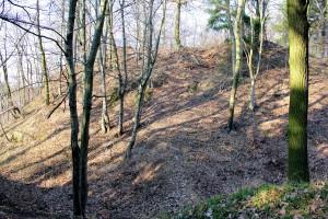 Burg Wippra, Burghügel der Kernburg