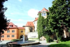 Droyßig, Schloss