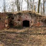 Burg Anhalt, Kellergeschoss der Gebäude in der Kernburg