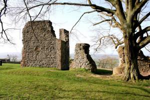 Ruine der Amöneburg