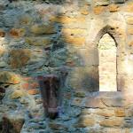 Kloster Nimbschen, Fenster und Gewölbeansatz