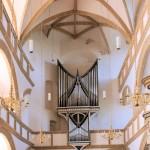 Torgau, Schlosskapelle, Orgel