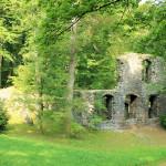 Zella, Kloster Altzella, Abtei