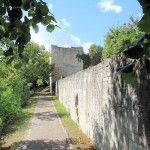Zscheiplitz, ehem. Benediktinerinnen-Kloster, Mauer und Wachturm