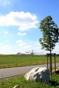 Sinnbilder einer Landschaft: Schaufelradbagger, Radweg und junger Baum am Markkleeberger See