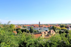 Blick auf Eilenburg