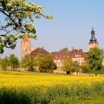 Burg Querfurt, Ansicht von Süden, Zustand 2006
