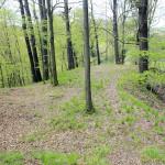 Chursdorf, Burg Drachenfels, Bergsporn zur Zwickauer Mulde