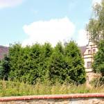 Ebersbach, Rittergut