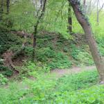 Kunitz, Burg Gleißberg (Kunitzburg), Wall