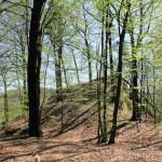 Sörnzig, Burg Katzenstein