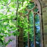 Grimma, Fenster der Stadtkirche Unser Lieben Frauen