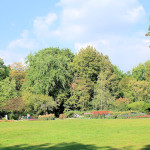 Clara-Zetkin-Park, Dahliengarten