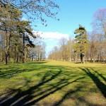 Schloss Trebsen, Schlosspark (Großer Garten)